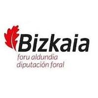 DIPUTACION FORAL DE BIZKAIA