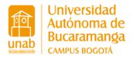 UNIVERSIDAD AUTONOMA DE BUCARAMANGA -UNAB
