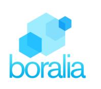 BORALIA CONSULTORES, S.L.